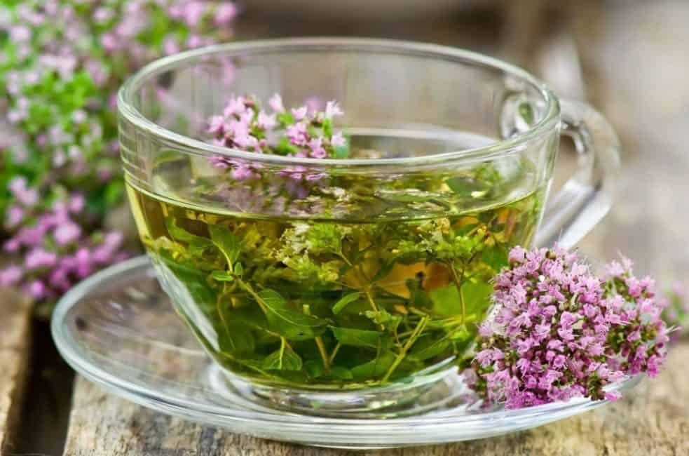 Чай с шалфеем ингредиенты фото