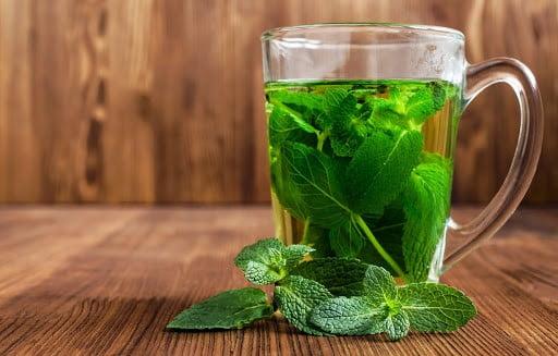 Успокоительный чай свойства фото
