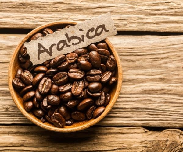 арабика кофе фото