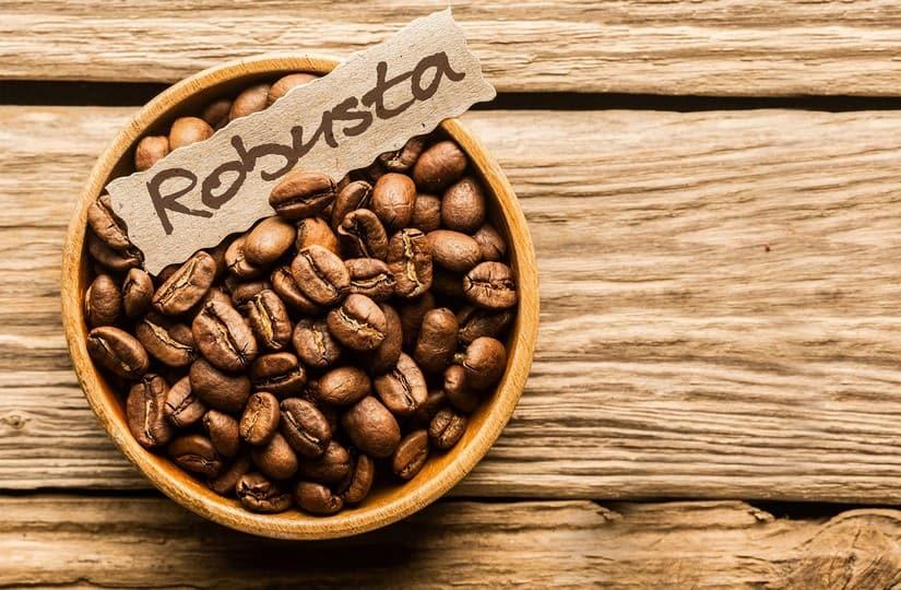 робуста кофе фото