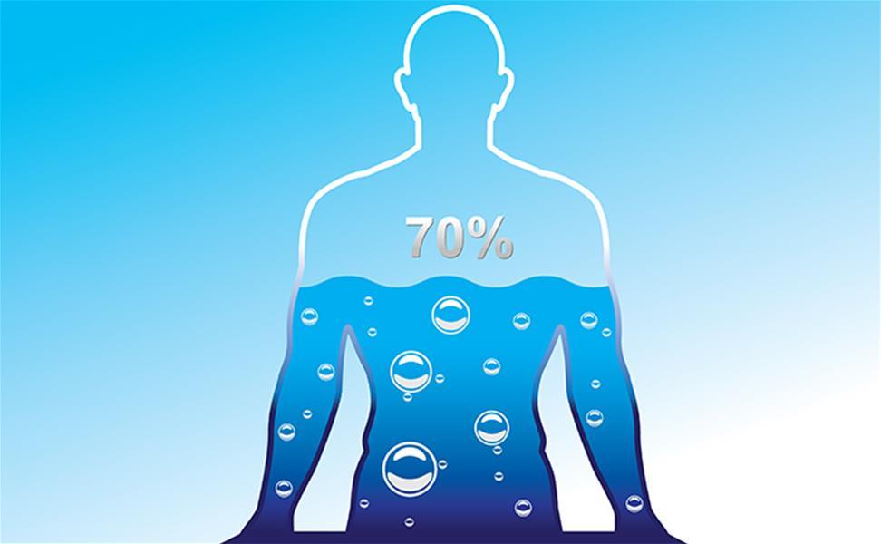 человек состоит из воды