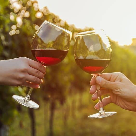 вино возле виноградников