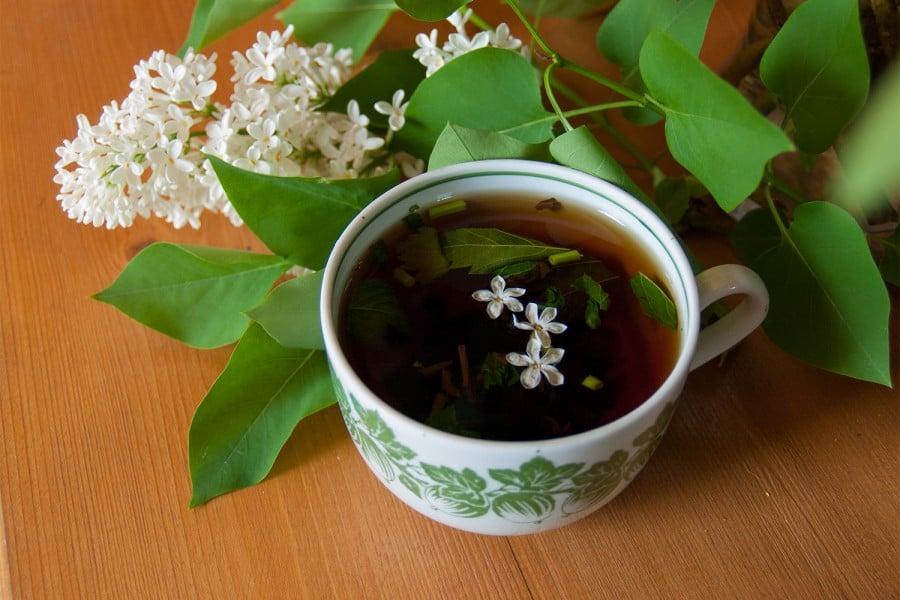 Чай с черемухой фото